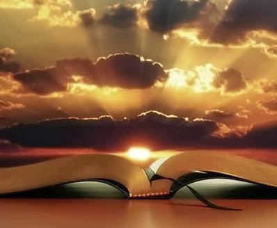 Salmo 8 - O Ser humano na Criação